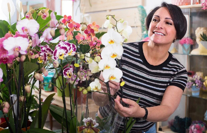 5 Reasons that make Orchids Perfect gifts for Mother's Day